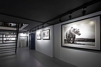 frame-products-david-yarrow-kunsthuizen-8-perfect-white-artglass