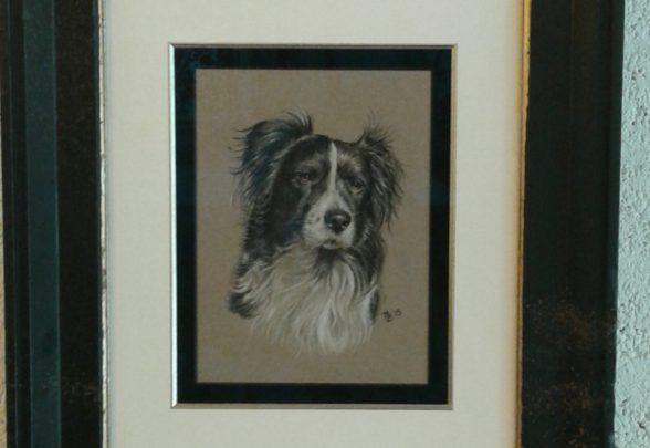 lex-lijsten-hond-ingelijst-met-artglass